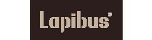 LAPIBUS